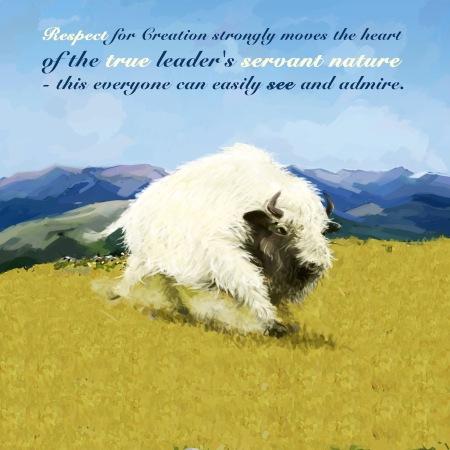 sacred buffalo and respect