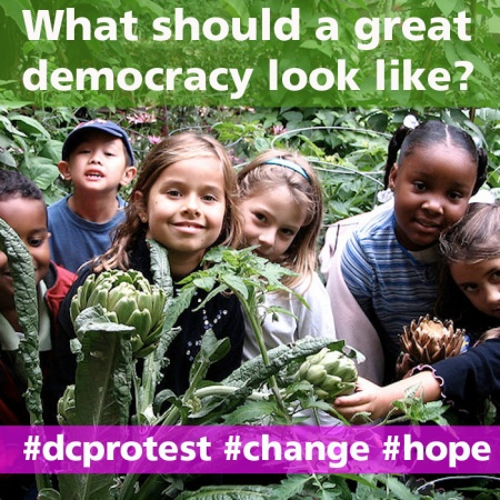 What should democracy look like 1